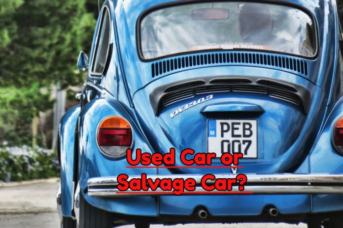 Used Car or Salvage Car?